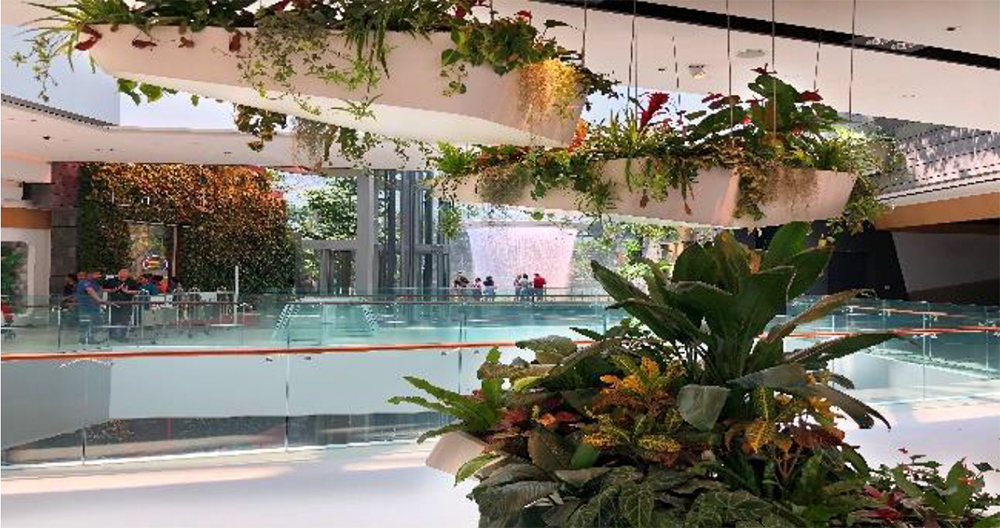 Changi-Experience-Studio01